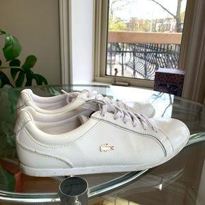 Lacoste - Sneakers